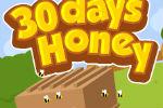 Pčelarstvo – Farma Igre