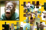 Majmun puzzle Igre