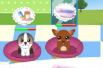 Dog Shelter Game – Doggie Daycare Games