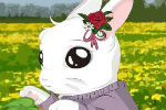 White Rabbit Dress Up Game – Animal Games